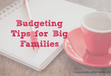 Budgeting Tips for Big Families