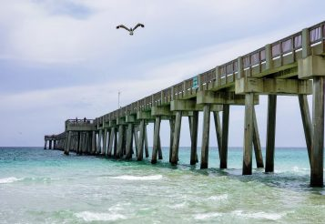 6 Florida Travel Tips and Florida Family Vacation Guide
