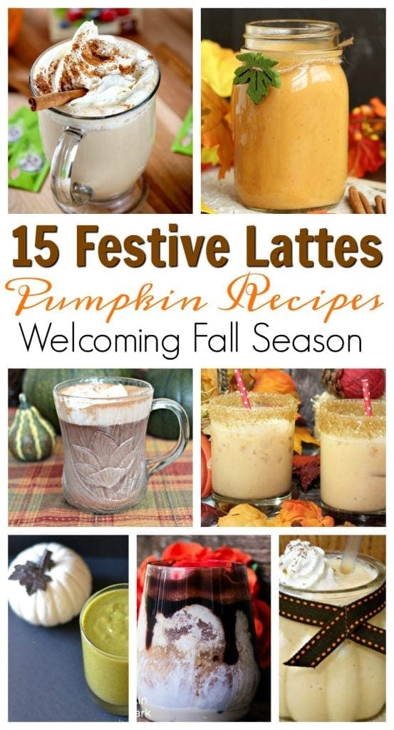 Fall is on its way and with it brings all things pumpkin. How about 15 festive pumpkin drink recipes featuring hot pumpkin lattes to welcome fall. https://www.southernfamilyfun.com/pumpkin-drink-recipes/
