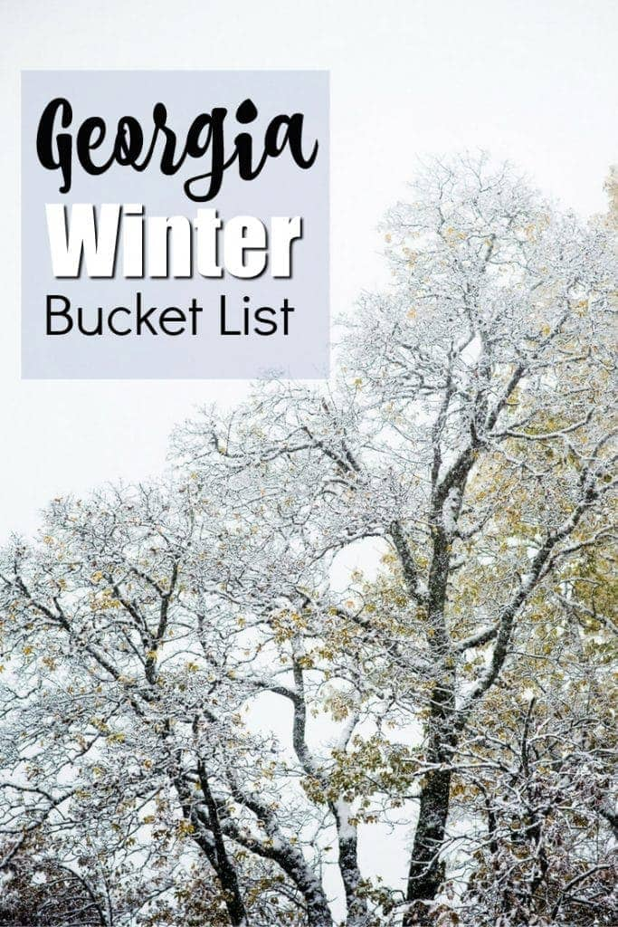 Georgia Travels - Winter Bucket List