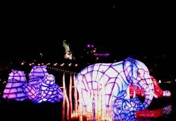 Rivers of Light at Disney's Animal Kingdom #DisneySMMC