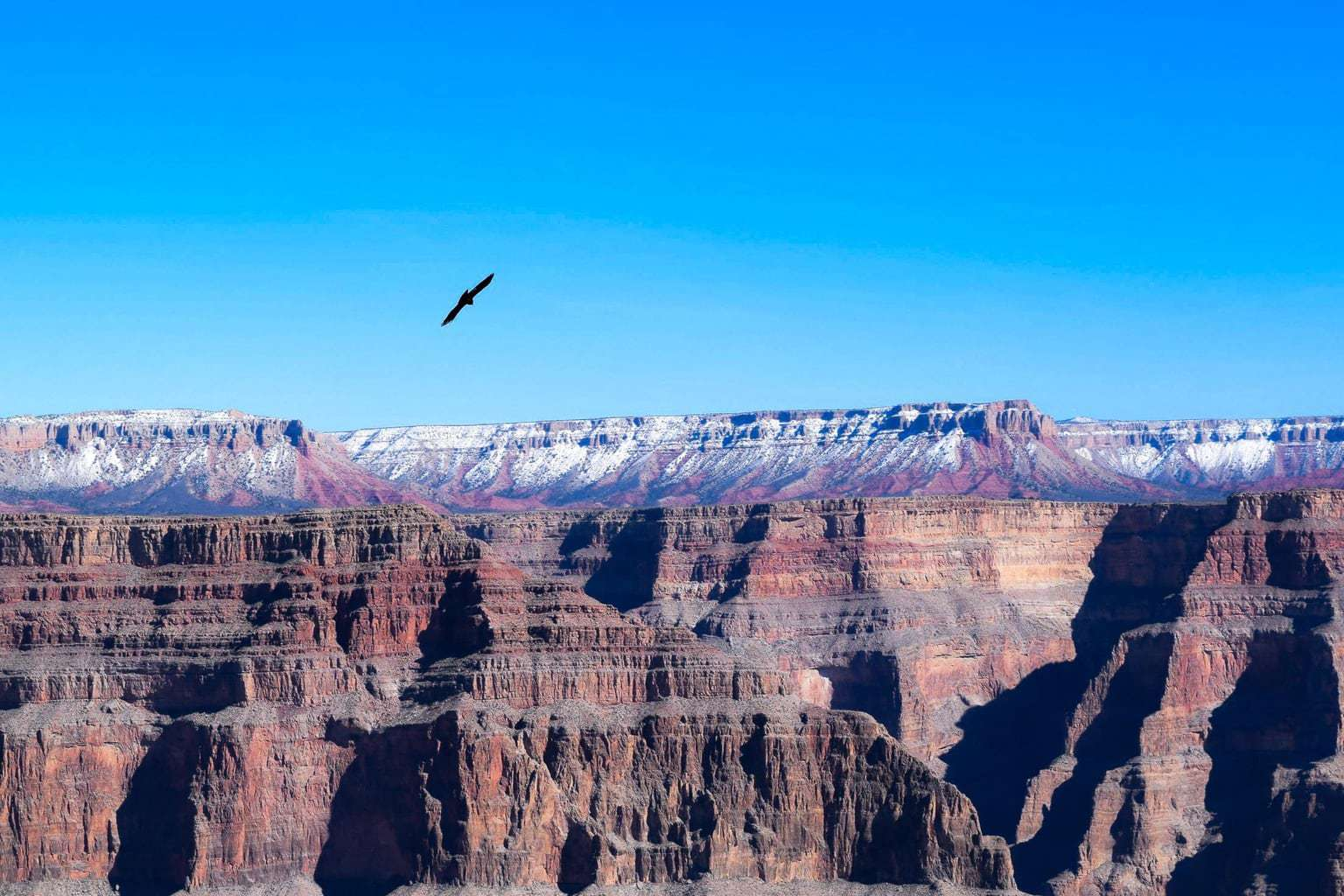 detours of nevada grand canyon tour