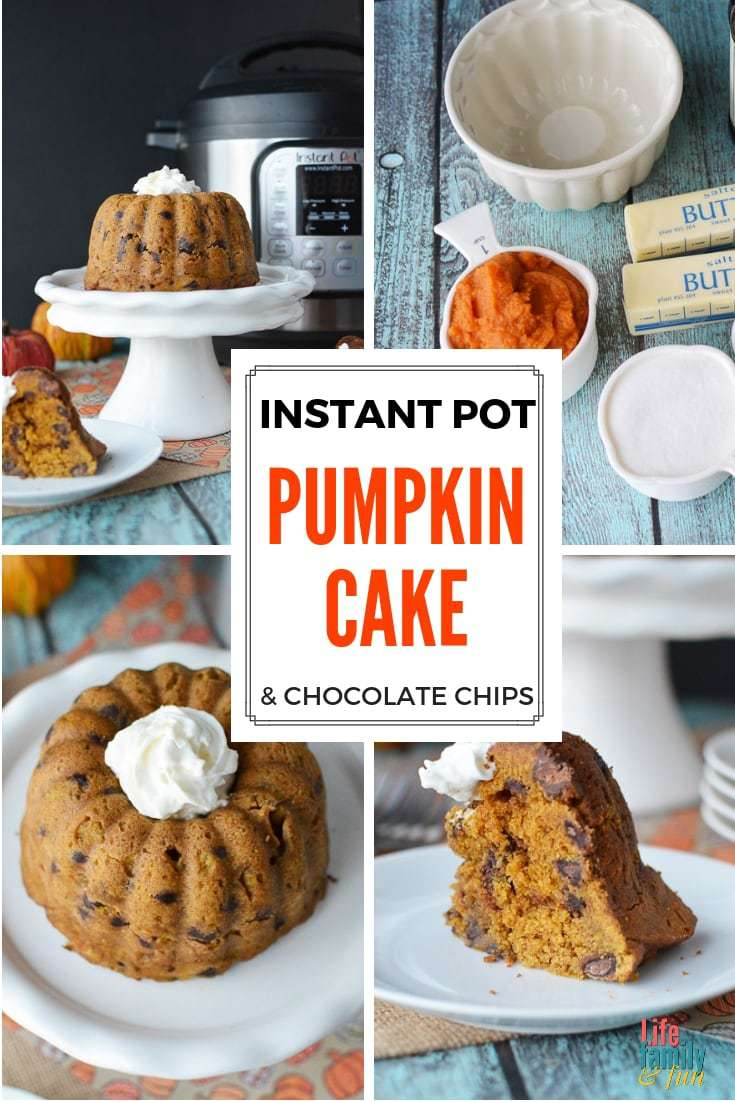 This Instant Pot Pumpkin Chocolate Chip Cake is something worth making. It's pumpkin season and it only makes sense to make something this delicious this fall. https://www.lifefamilyfun.com/pumpkin-chocolate-chip-cake/