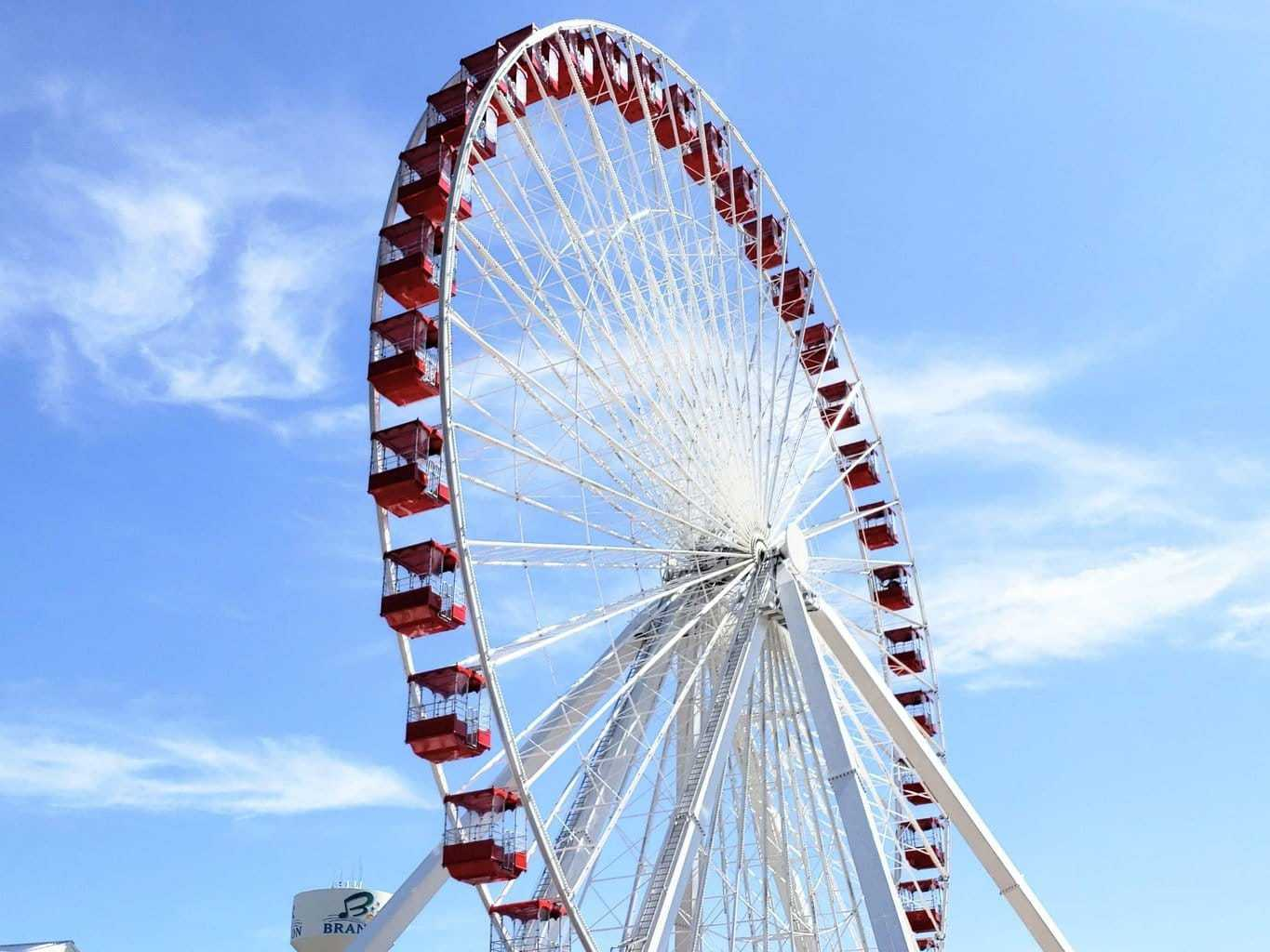 The Track Family Fun Park & Branson Ferris Wheel – Fun for Everyone!