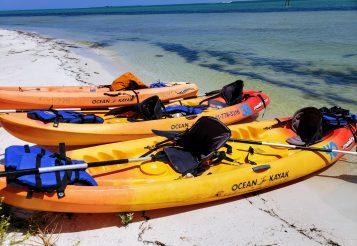 Beach Bums Kayaking on Anna Maria Island – A Family Fun Adventure