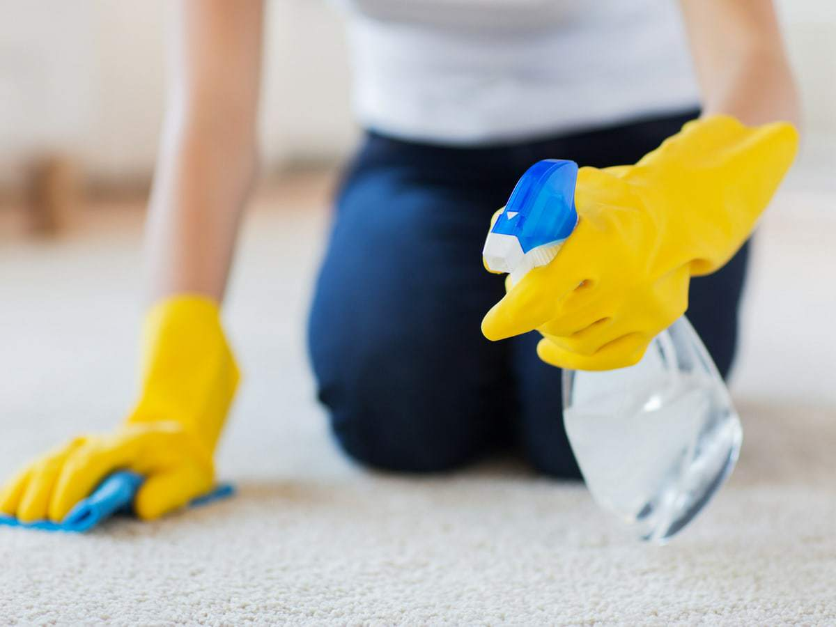 Never rub spills on carpets, carpet cleaning tips