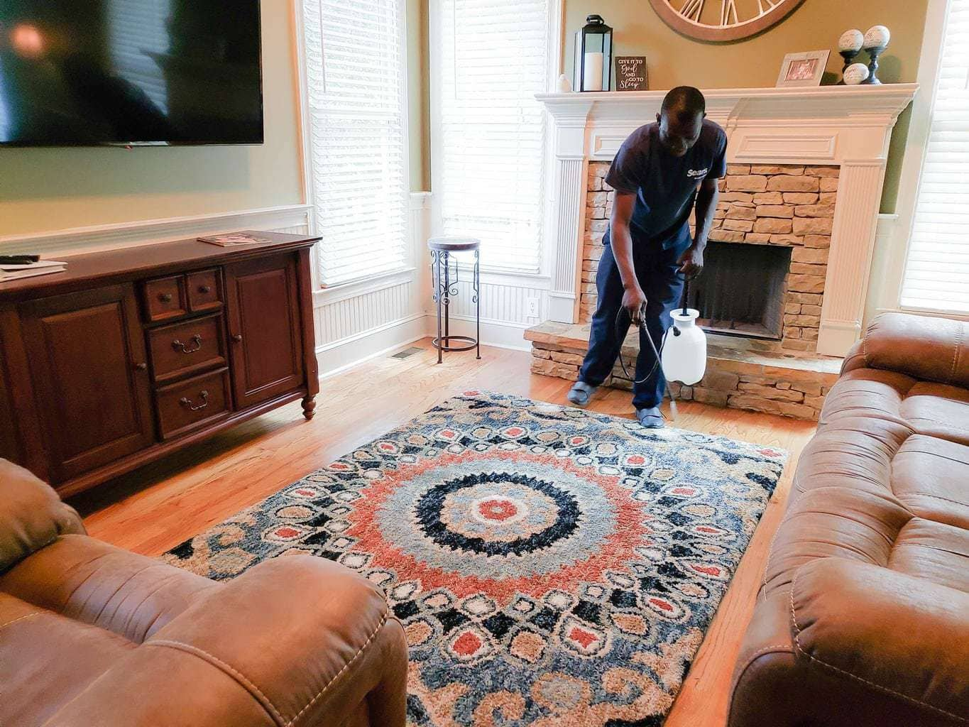 Scotchguard for carpets, carpet cleaning tips