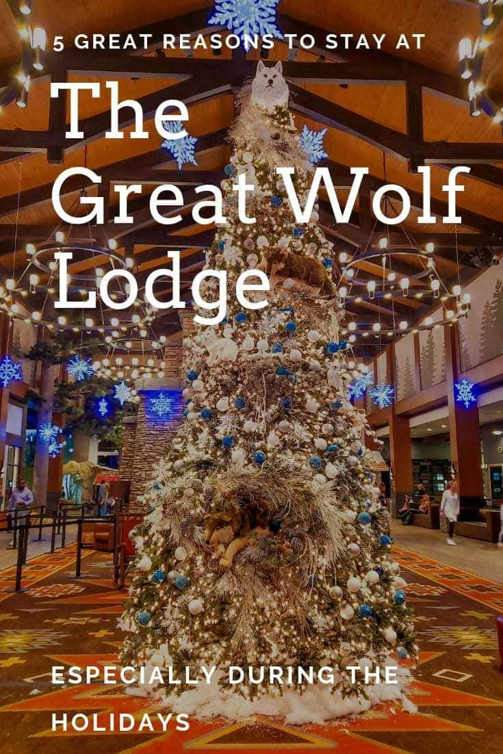 For your next family vacation Great Wolf Lodge Georgia should be on your list! We've compiled 5 howling good reasons you should stay here.