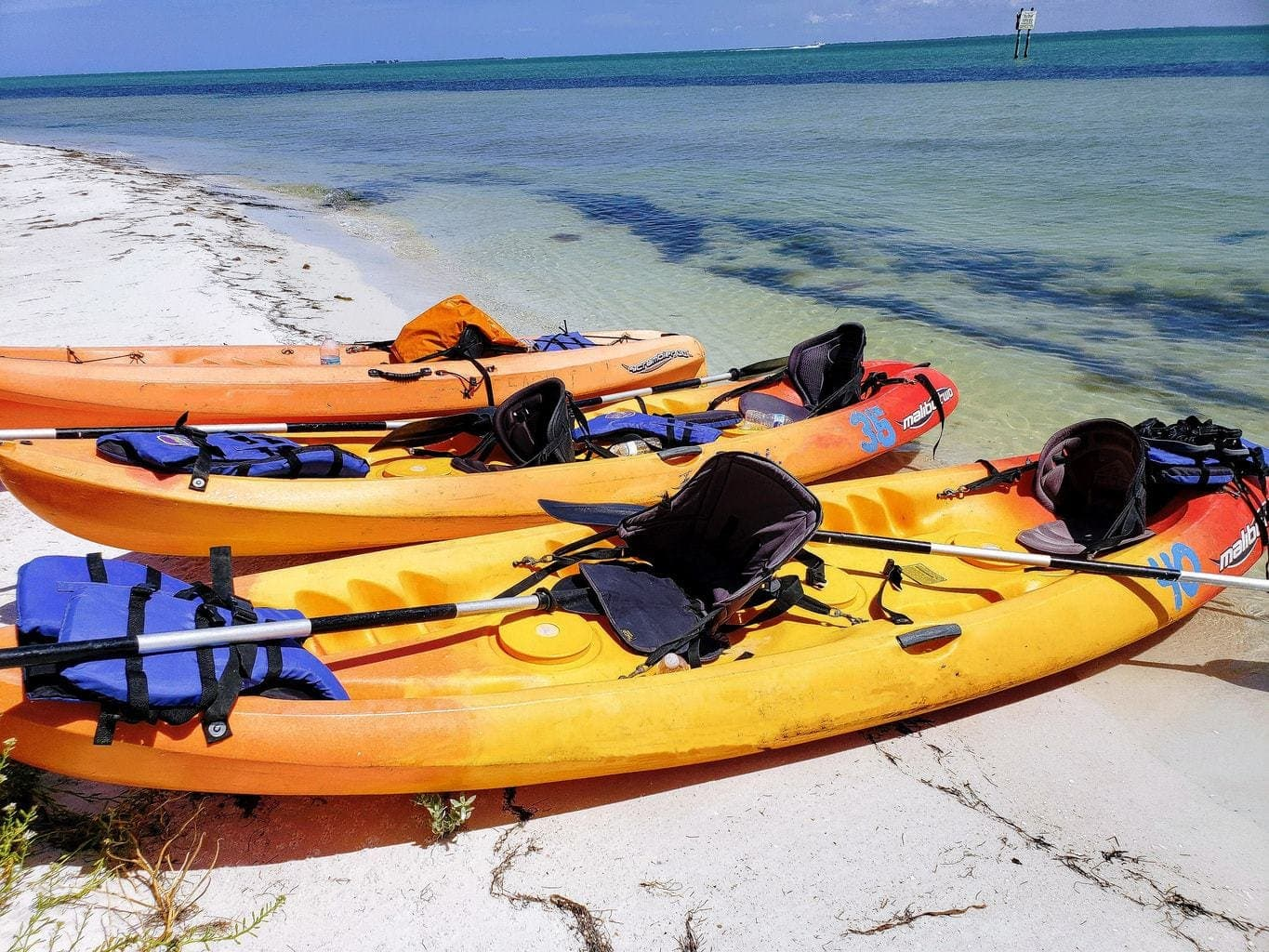 travel with kids, kayaking in florida