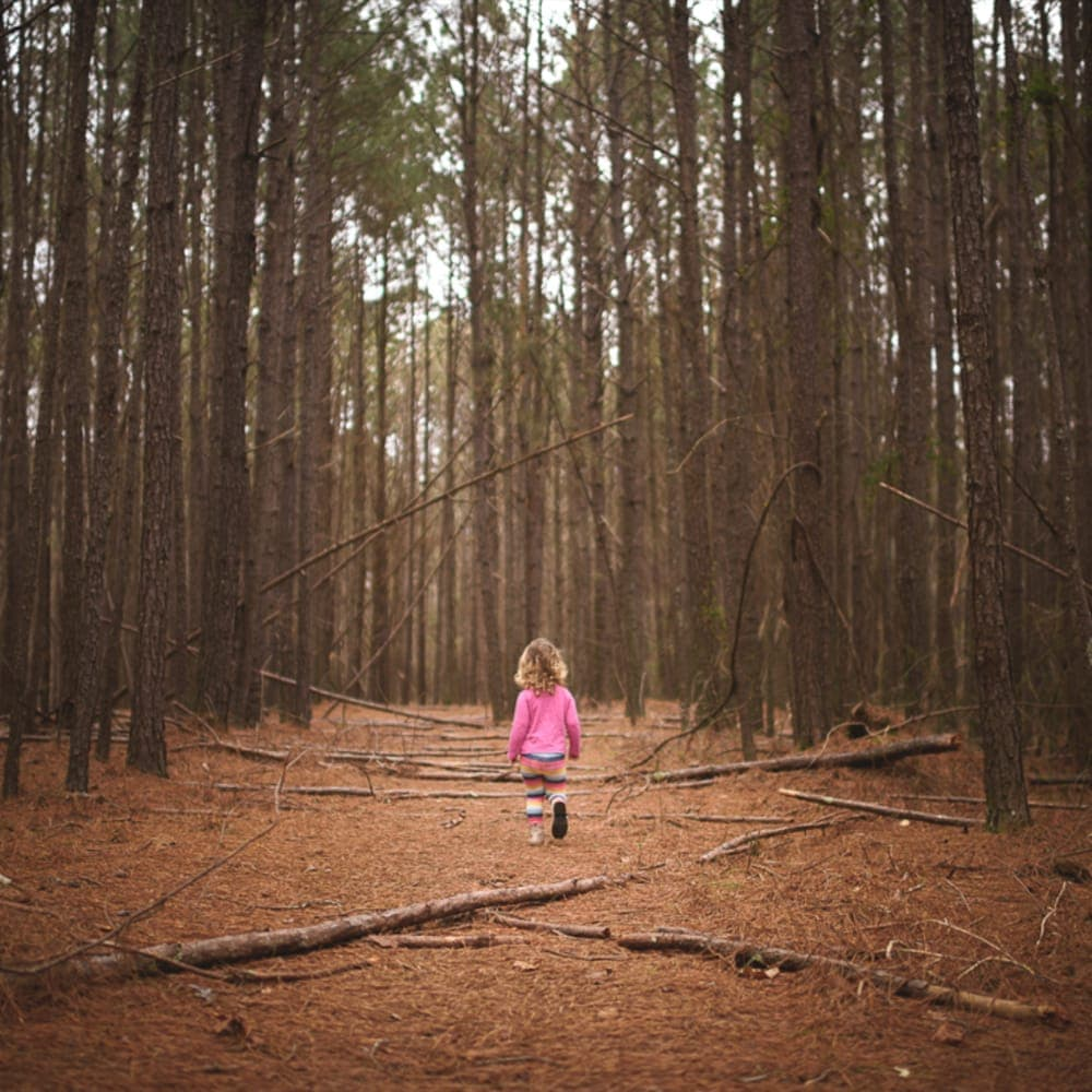 7 Family Friendly Hiking Trails To Explore in North Georgia