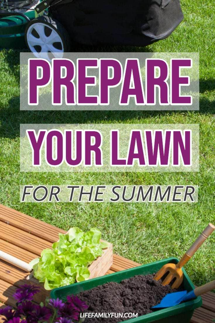 Summer Lawn, caring for your yard for Summer