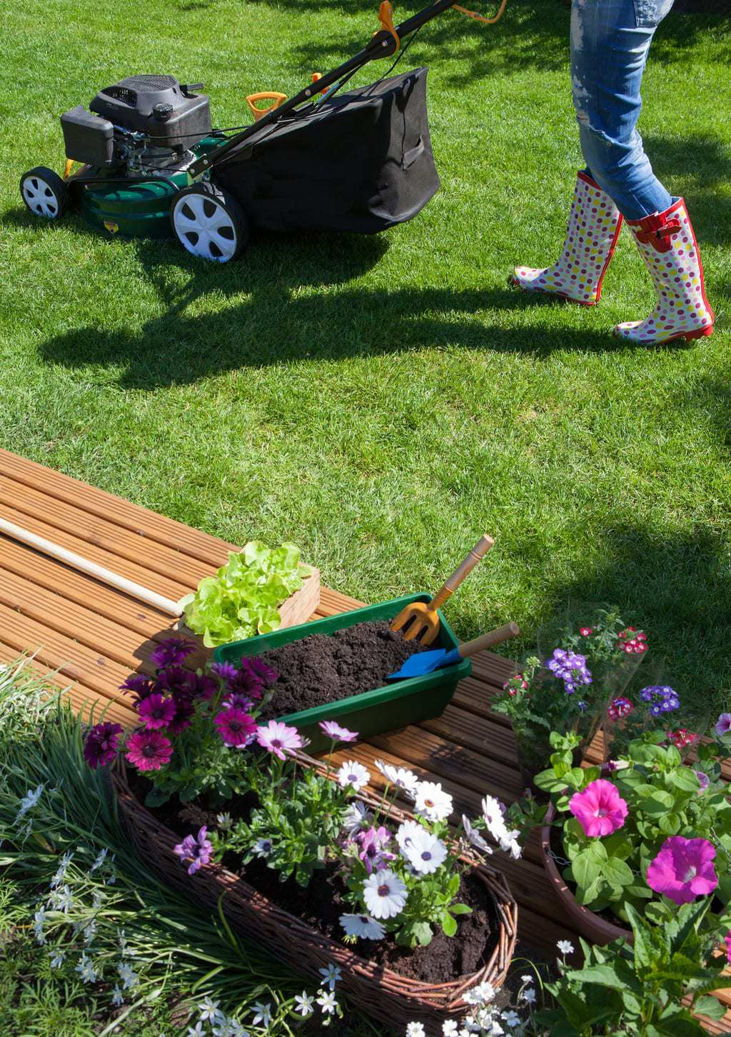 lawn care mowing tips