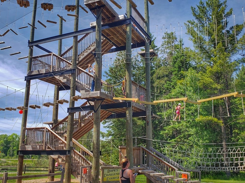 Kids will love the adventure park with zip lines at the NEW Zoo