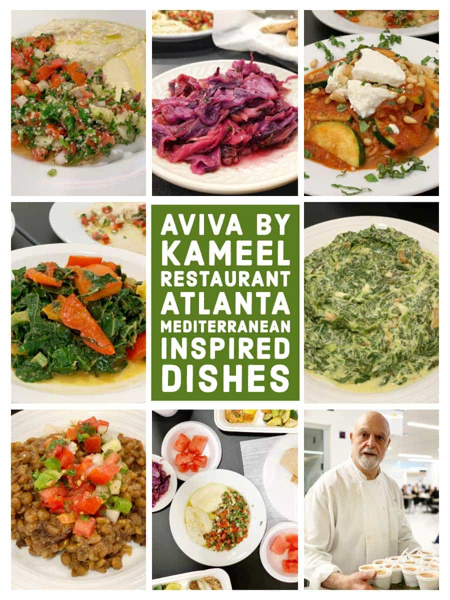 aviva by kameel restaurant in atlanta