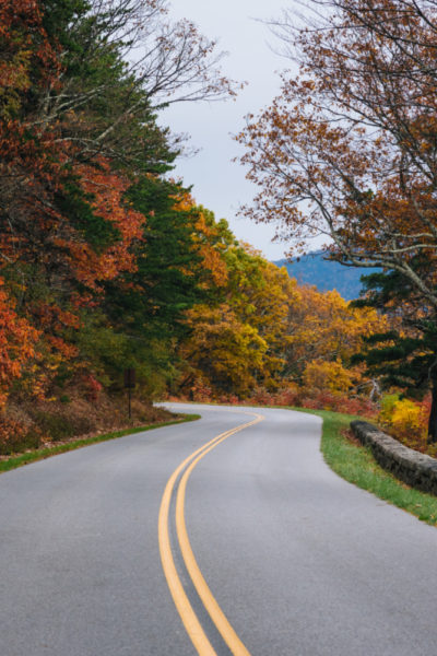 Family Thanksgiving Traditions plus Holiday Road Trip Safety Tips