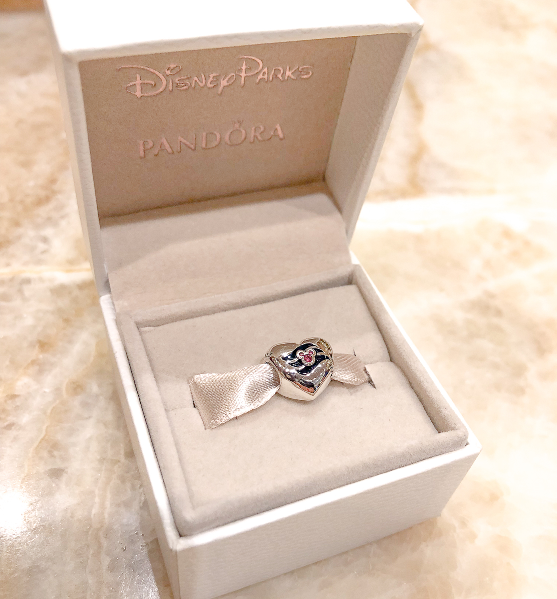 Disney Pandora Charm for a Disney World Souvenir