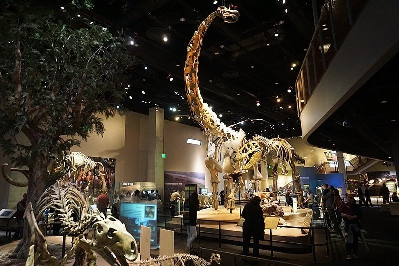 Perot Museum, family friendly things to do in Dallas Fort Worth