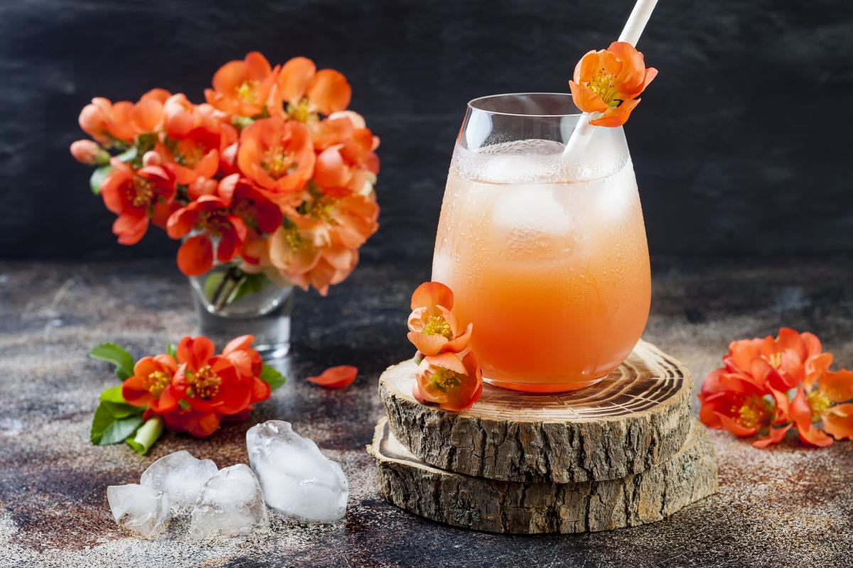 Classic Greyhound Cocktail