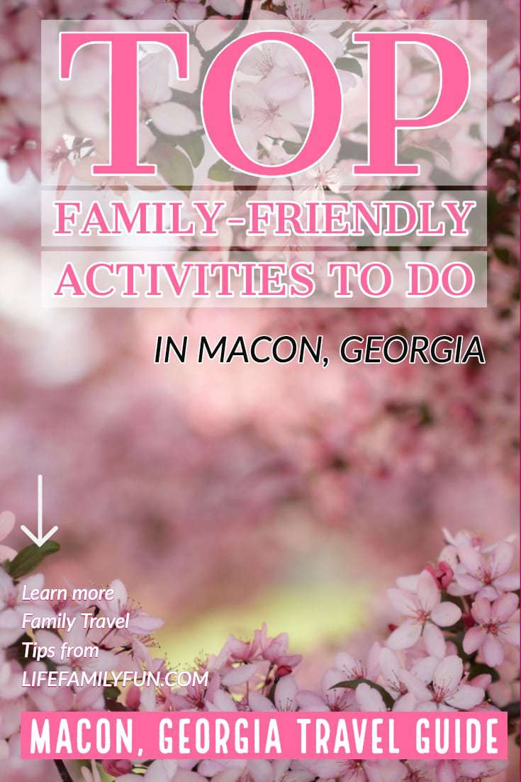 things to do in macon georgia, international cherry blossom festival