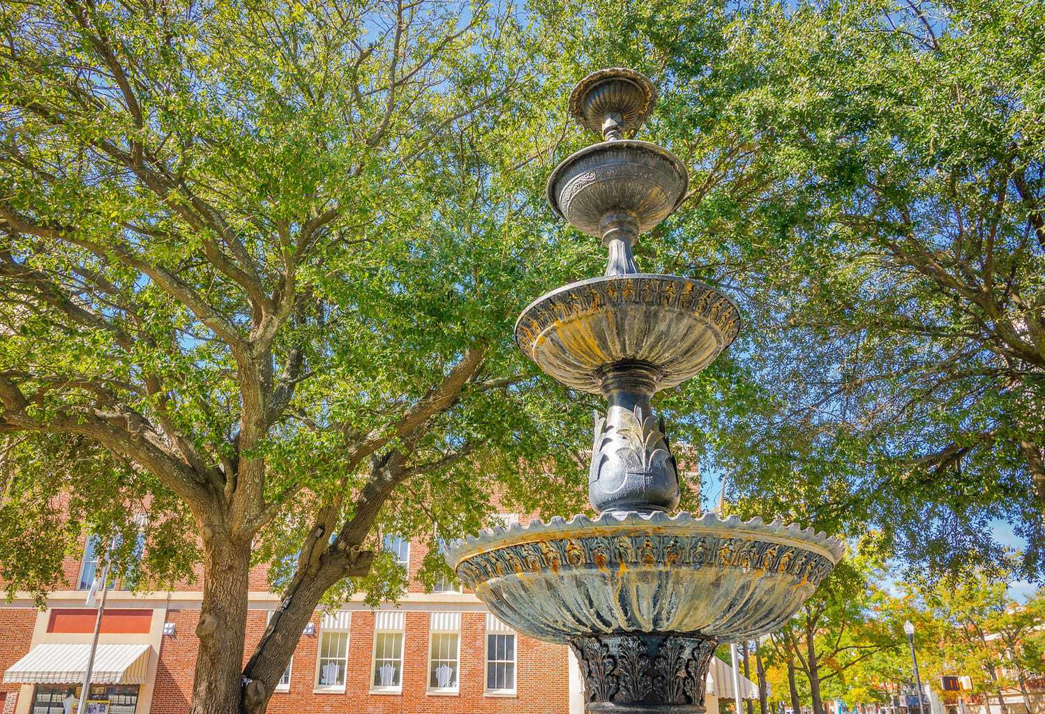 Things to do in Macon