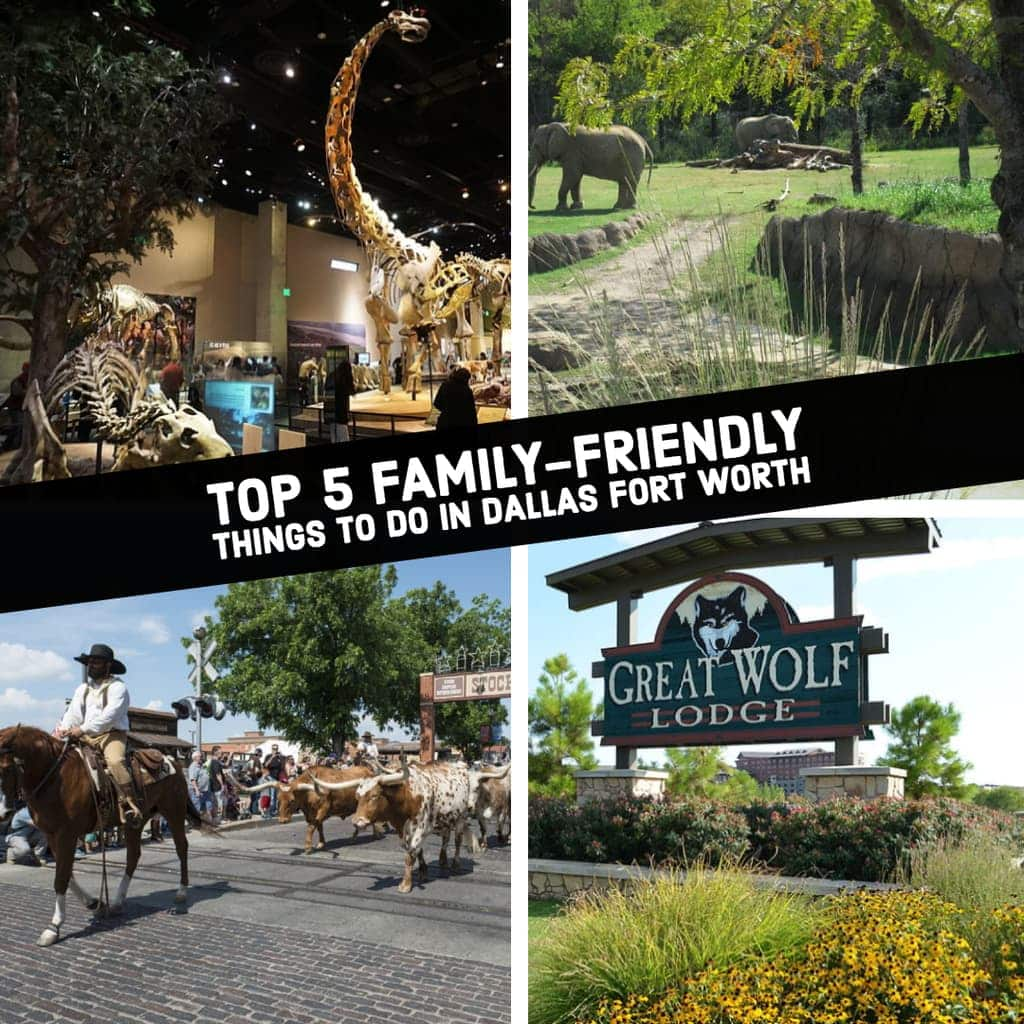As kids have less school due to spring break or summer, parents want to keep their kids active without breaking the bank. If you are visiting or live in Dallas Fort Worth area you are going to want to read on. We have put together the Top 5 Family-friendly things to do in Dallas-Fort Worth Area.